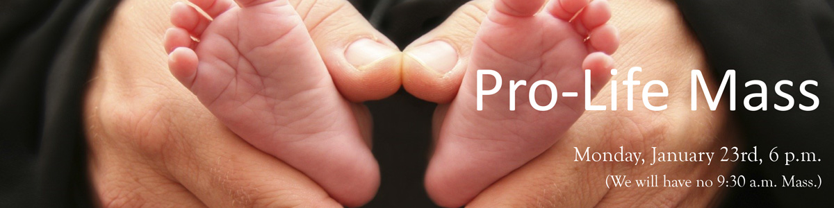 prolife-mass-01